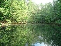 Waldmichelbacher See.JPG