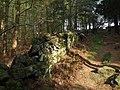 Wall in Gormires Wood - geograph.org.uk - 1265074.jpg