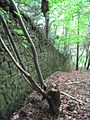 Wall in the woods - geograph.org.uk - 951542.jpg