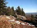 Wapack Trail (7638329716).jpg