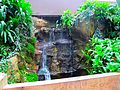 Waterfall in Bolz Conservatory - panoramio (1).jpg