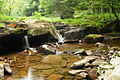 Waterfalls-seneca-camp - West Virginia - ForestWander.jpg