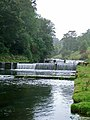 Weirs on the River Lathkill - geograph.org.uk - 207163.jpg