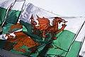 Welsh flags, St David's Day 2009 Baner Cymru, Dydd Gŵyl Dewi 2009.jpg