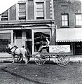 Wilford Elliott on his Butcher's cart on Lakeshore Rd. (early 1900s) (27428075475).jpg