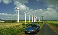 Wind farm at South Point - Flickr - exfordy.jpg