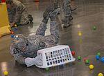 Wingman Day, Travis AFB (Image 1 of 7) 160512-F-RU983-055.jpg
