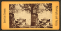 Wissahickon, from Robert N. Dennis collection of stereoscopic views.png