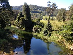 Wongawallan, Queensland - Wongawallan Creek