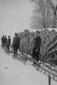 Wooden sleighs empty around 1945.jpg