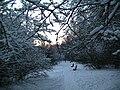 Yasenevo Winter.jpg