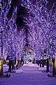 YokohamaMarkIsIllumination.jpg