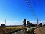Yonwzawa 2015 Spring (17271558572).jpg