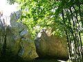 Zricene skalni bloky u cesty z Bilych vod na Rujiste.jpg