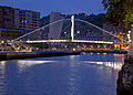 Zubizuri bridge Night 4 (3820008003).jpg