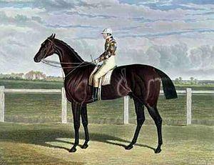 Rockingham (horse) - Rockingham', the Winner of the Great St. Leger Stakes at Doncaster, 1833 by John Frederick Herring, Sr.