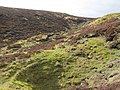(A fourth) bell pit near the head of Whimsey Cleugh (2) - geograph.org.uk - 1289332.jpg