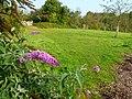 ©dada-Plantes sauvages.jpg