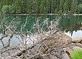 Černé jezero (6).jpg