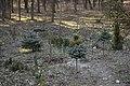 Ботанічний сад Національного аграрного університету 05.jpg