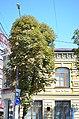 Будинок по Проскурівській, 47.jpg