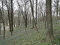 Весна в Центральном парке - panoramio.jpg
