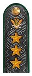 Действительный государственный советник РФ 1 класса ФССП.png