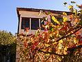 Есен в Мелник.jpg