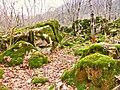 Каменный хаос на северном склоне горы Стрижамент 04.jpg