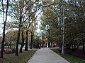 Парк Усадьба Воронцова 03.jpg