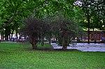 Парк имени Горького в Москве. Фото 28.jpg