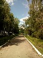 Прилуцький дендропарк Прилуцький район, м. Прилуки, вул. Вавилова, 16 74-107-500 14.jpg