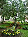 Псково-Печерский мужской монастырь 12.jpg