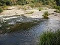 Річка Рось у Корсунь-Шевченківському парку.JPG