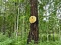 Семибратское охотничье хозяйство - panoramio.jpg
