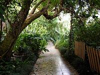 Уфимский Ботанический Сад.jpg