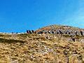 Шар Планина и врвот Љуботен 07.jpg