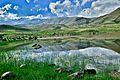 آبگير در مسير سبلان Pond - panoramio.jpg