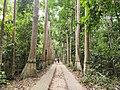 লাউয়াছড়া জাতীয় উদ্যান প্রবেশ দ্বার.jpg