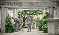 """""""Flags in"""" with The Old Guard in Arlington National Cemetery (17763344028).jpg"""