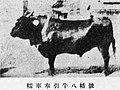八幡号 1938.jpg