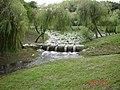 大雨過的巴克禮公園 - panoramio.jpg