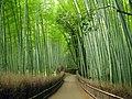 嵐山の竹林の小径 (The bamboo grove in Arashiyama) 10 Jul, 2010 - panoramio.jpg