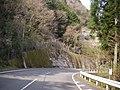 県道192号 - panoramio (1).jpg