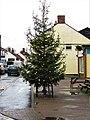 -2019-12-06 Christmas tree, Stalham High Street.JPG