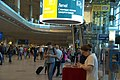 0091 Domodedovo International Airport 16th of August 2016.jpg