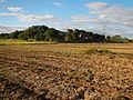 0096jfLandscapes Sunsets Fields Maronquillo San Rafael Bulacanfvf 28.JPG