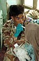 021103-A-4339E-029 A Republic of Korea Army medic examines an Afghan child in the village of Sayed, Afghanistan, on Nov. 3, 2002.jpg