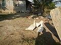 02559jfGatbuca Chapel Halls Gugo Calizon Calumpit Bulacan Roadsfvf 27.JPG