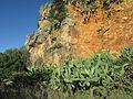 06-12-2016, Rocky gorge near Pátio, Albufeira (1).JPG